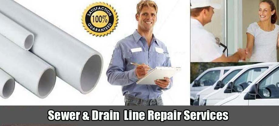 Cole Plumbing, Inc. Sewer Line Repair